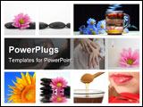 PowerPoint Template - A set of images on topic natural beauty