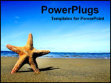 PowerPoint Template - starfish on beach