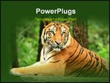 PowerPoint Template - e wait to get close from our car to this wild animal which is famously named Tiger. It shows how st