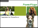 PowerPoint Template - A beautiful woman sitting on the grass with dog and cocker spaniel plus a dog over white background