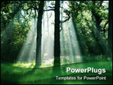 PowerPoint Template - Misty morning with ray of sunlight in the forest