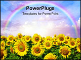 PowerPoint Template - sunflower field over a cloudy blue sky