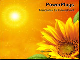 PowerPoint Template - Yellow sunflower, sunflower reaching for the sun