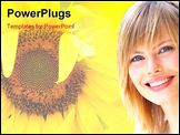 PowerPoint Template - Closeup of a Sunflower in full bloom in summer