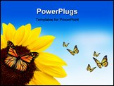 PowerPoint Template - Beautiful butterfly on a bright sunflower outdoors