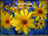 PowerPoint Template - Wildflowers with the blue background evening sun