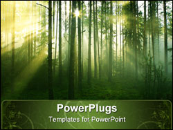 PowerPoint Template - Sun rays crossing a misty forest photographed in an early summer morning.