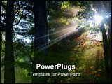 PowerPoint Template - Sun shining through the trees on a very misty fall day