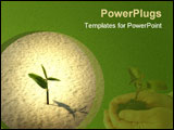 PowerPoint Template - A single young plant sprouting from a sea of sand.