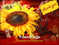 PowerPoint Template - Still life or table decoration for Thanksgiving