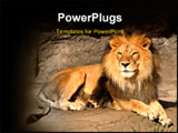 PowerPoint Template - lion relaxing