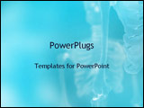 PowerPoint Template - X-ray