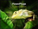PowerPoint Template - big tree lizard in the urban parks