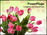 PowerPoint Template - Spring Tulips bouquet isolated on White background