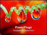 PowerPoint Template - Rain drops on vine with red tulip in the background.