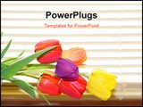 PowerPoint Template - Tulip flowers on the basket by the window blinds