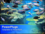 PowerPoint Template - Underwater colorful tropical fishes and beautiful corals.