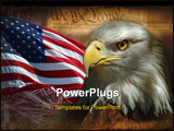 PowerPoint Template - Head of Bald Eagle