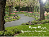 PowerPoint Template - Blossomed trees line this paved garden pathway