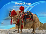 PowerPoint Template - Rare white yak with Himalaya mountain range at the background.